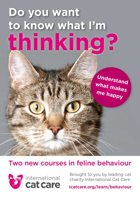 iCatCare behaviour courses